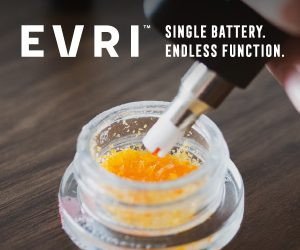 EVRI Dip Devices
