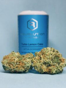 Turbo Lemon Cake by Revolution