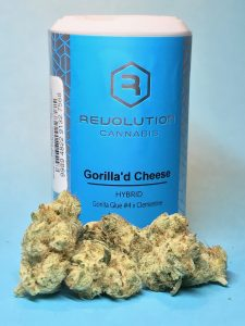 Gorilla'd Cheese by Revolution