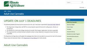cannabis licenses