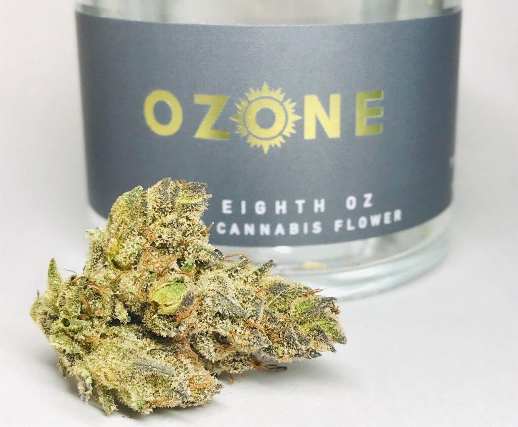 Strawberry #17 by Ozone