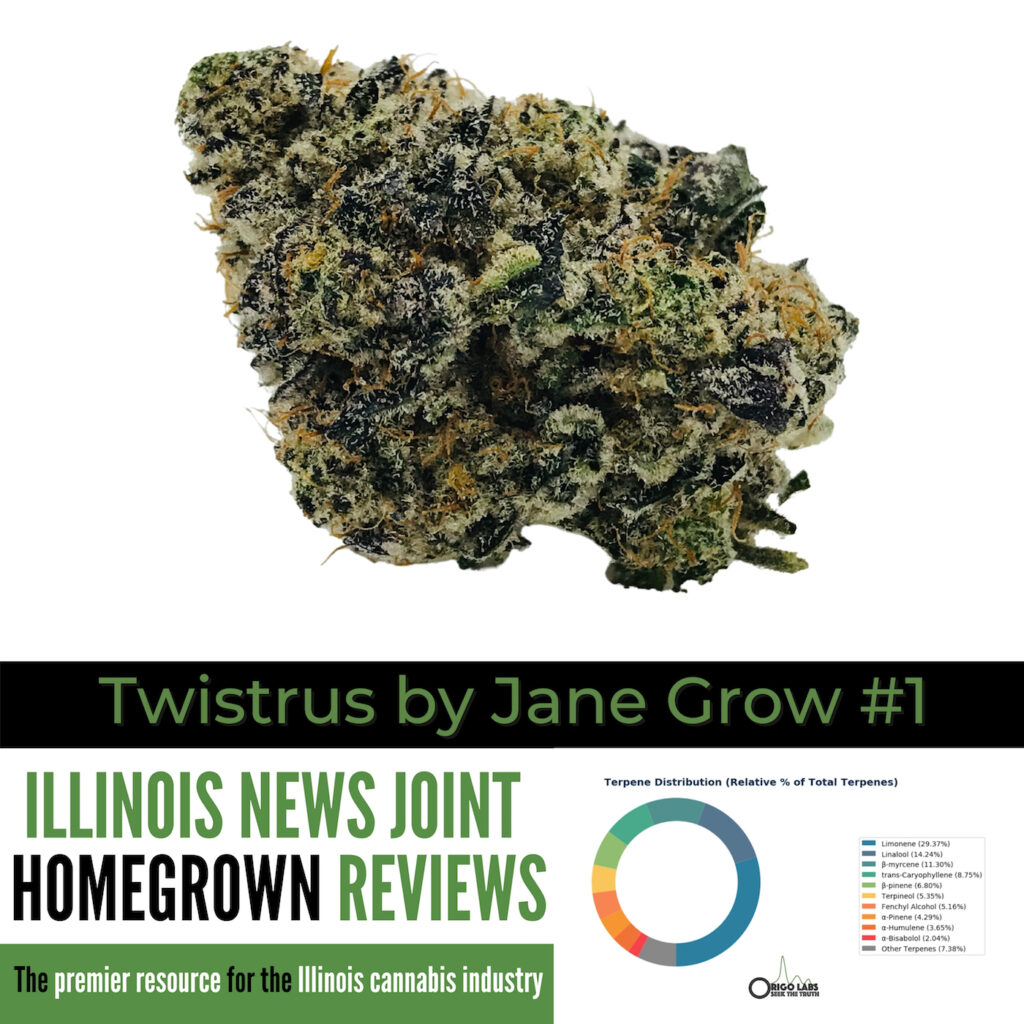 Twistrus by Jane Grow #1