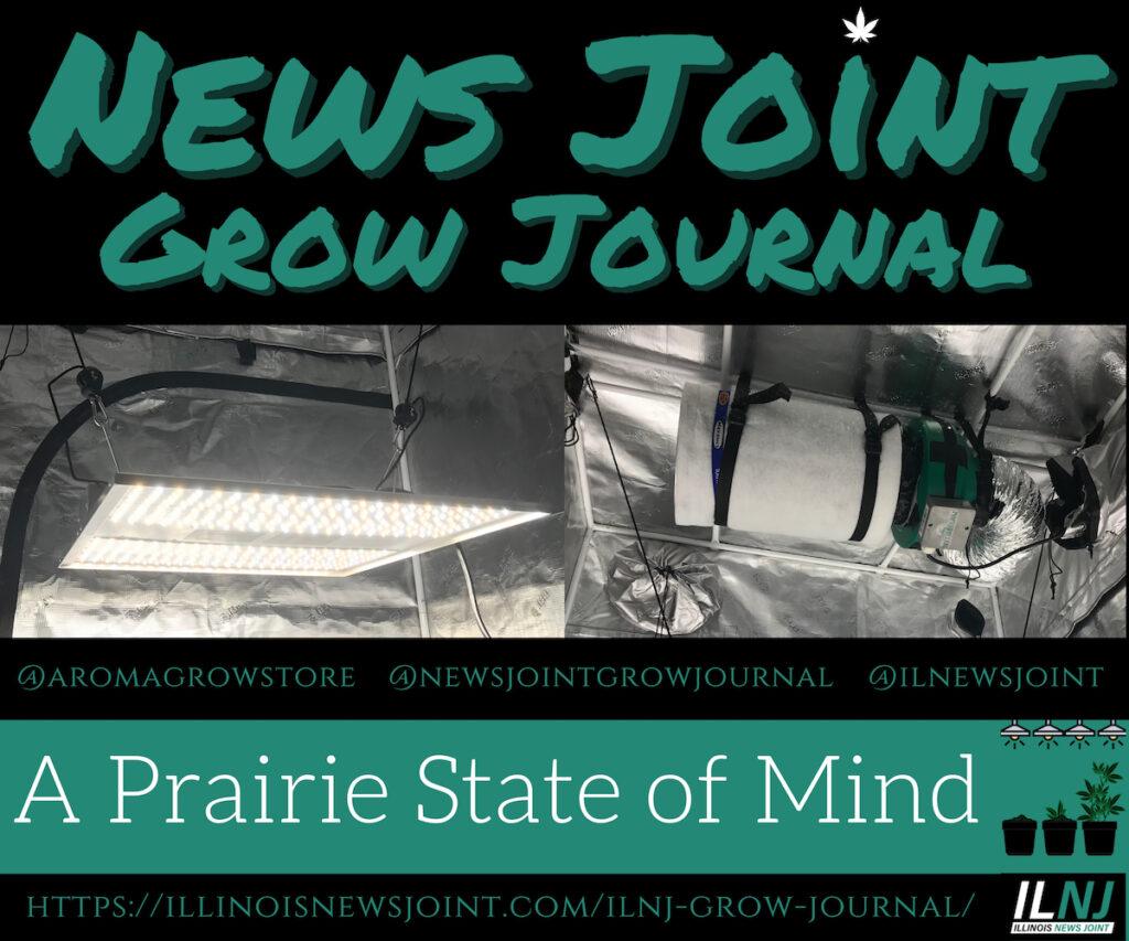 News Joint Grow Journal 3