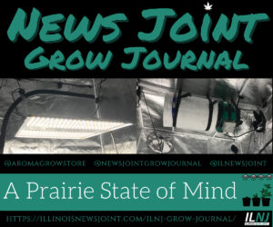 News Joint Grow Journal 3
