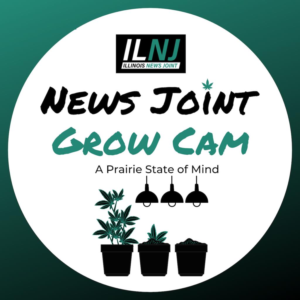 News Joint Grow Cam