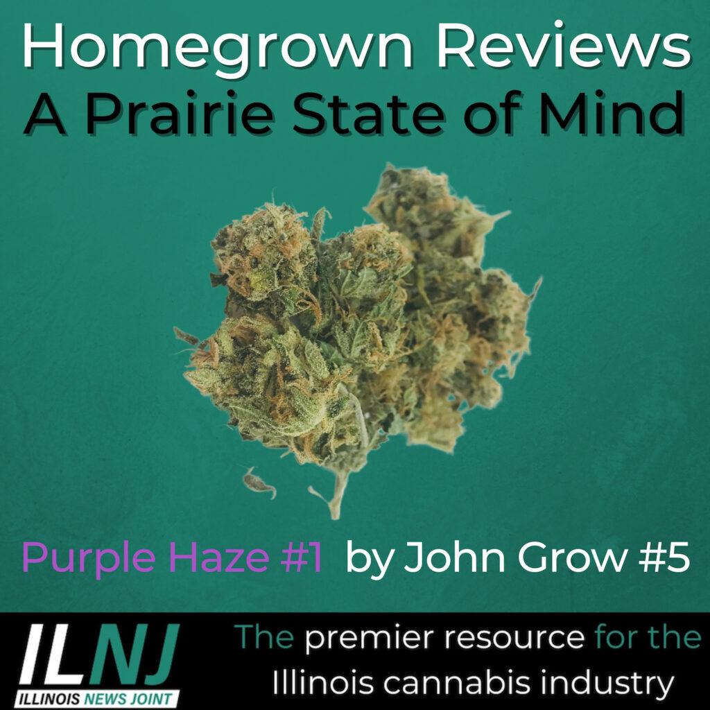 Purple Haze #1 by John Grow #5