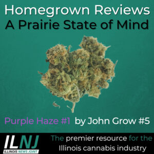 Purple Haze #1 by John Grow #5