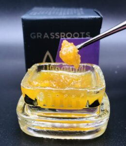 MAC Live Sugar Honey Bucket