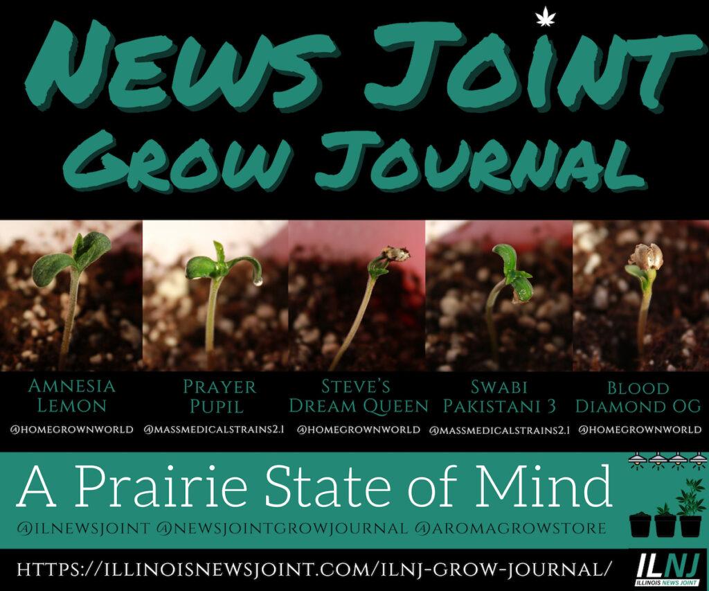 News Joint Grow Journal