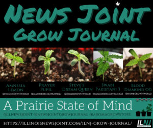 News Joint Grow Journal 2