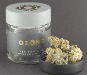 South Beach by Ozone