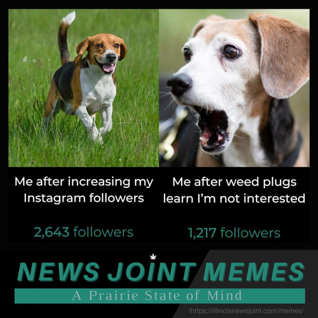 ILNJ meme
