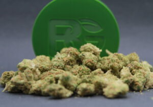 Beverly Road by Bedford Grow
