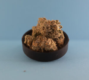 Mint Chocolate Chip by Revolution