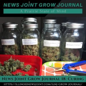 News Joint Grow Journal 18: Curing