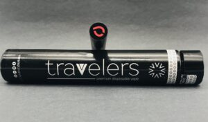 Wildberry Travelers Disposable Pen