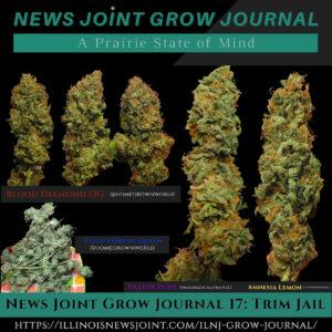 News Joint Grow Journal 16