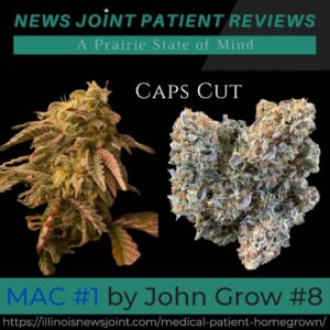 MAC #1 Caps Cut