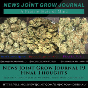 News Joint Grow Journal 19: Final Thoughts